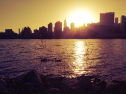 RTL_Sunset_NYC