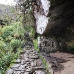 Inca Trail 6 - RTL
