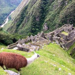 Inca Trail 7-RTL