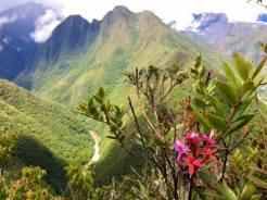 Inca Trail 8 - RTL