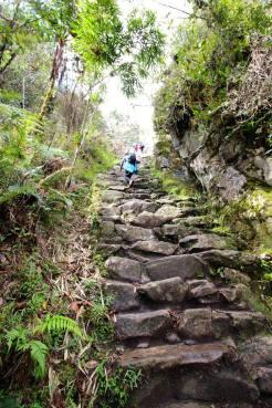 Inca Trail 9 - RTL